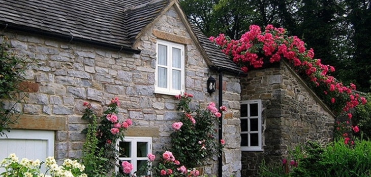 Rose cottage, by UGArdner